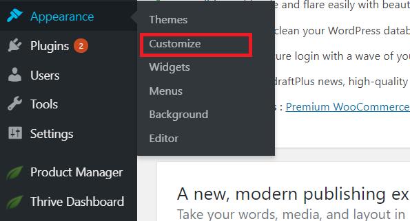 Thrive Themes customizer